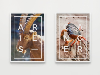 Posters - Star Signs (Aries & Cancer)