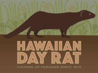Hawaiian Day Rat