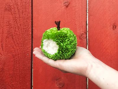 050 🍏 apple handmade yarn pom-pom the100dayproject