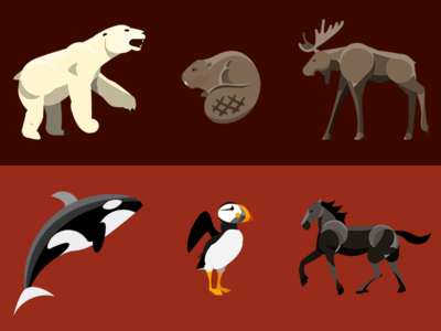 Animals Across Canada