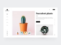 Succulent Plants-1