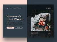 Landing Page Design | Daily UI #003