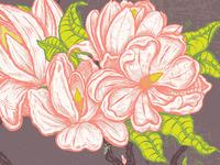 Steal Magnolias