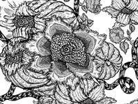 Clematis Vine Flower