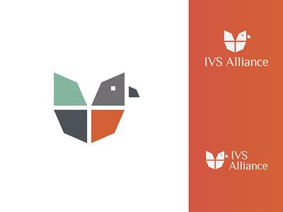 IVS Allience re-branding together alliance school redesign red robin robin bird illustration re-branding rebranding branding design logo mathijs boogaert