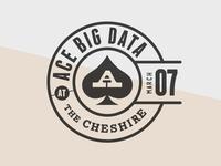 Ace Big Data