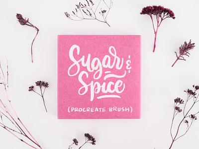 Sugar & Spice Procreate Brush procreate brushes procreate brush brush calligraphy digital lettering procreate