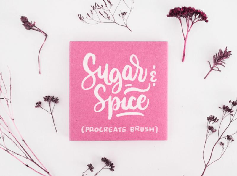 Sugar & Spice Procreate Brush