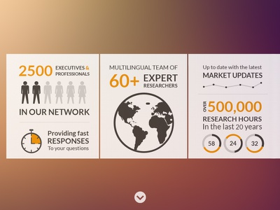 infographic website infographic flat pie blur typographic scroll website global icon info graphic chart