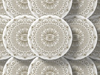 Caracal Coasters