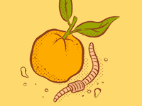 Orange and Earthworm