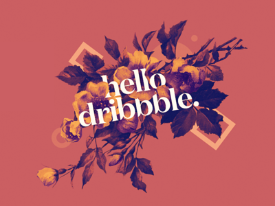 1 • Flora poster illustration geometry flower flora dribbble design debut