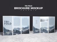 Free 2 Sided Tri-Fold Brochure Mockup Psd 2018