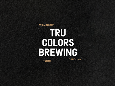 TRU Colors Brewery Branding logo mark identity branding identity design beer label beer can beer branding branding and identity brand design visual identity logo design brewery brand positioning brand strategy brand identity gangs gang beer design branding focus lab
