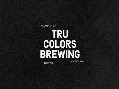 TRU Colors Brewery Branding logo mark identity branding identity design beer label beer can beer branding branding and identity brand design visual identity logo design brewery brand positioning brand strategy brand identity gangs gang beer design branding focus lab