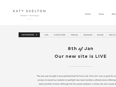 Bloggy design branding skelton web design clean focus lab blog