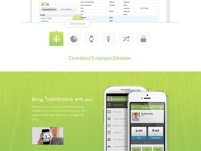 BambooHR design bamboohr ui web branding web design focus lab green software bamboo