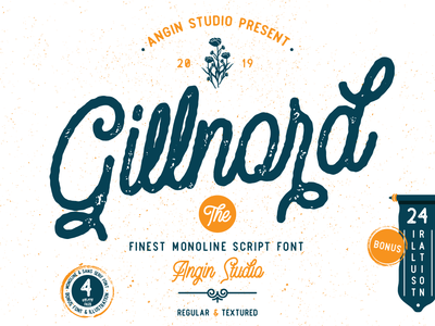 Gillnord Monoline Script font collection poster quote branding lettering font design typeface typography vintage logo display design classic font bundle monoline script type design font