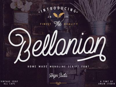 Bellonion Monoline Script Font branding lettering custom illustration vector typeface typography logo display font design font collection font bundle vintage classic serif script type design design font