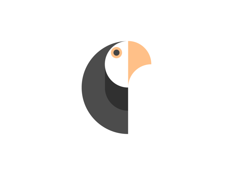 Geometric parrot ! by Nour Oumousse on Dribbble
