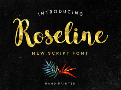 Roseline typeface script font typography