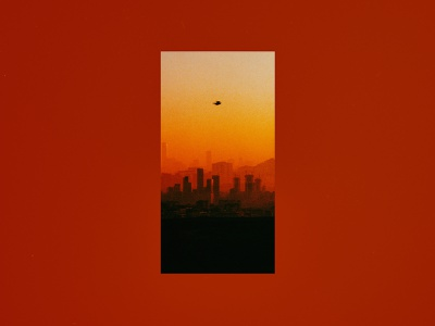 Arrival 35mm photography analog photography 35mm photoshop illustration print gradient bird sunset cityscape photography hermtheyounger herm the younger