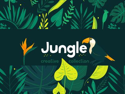 Jungle product on  Creative Market