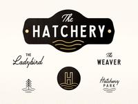 The Hatchery Branding