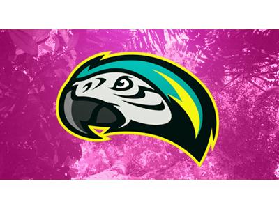 Summertime logo sports team parrot perroquet summer summertime été