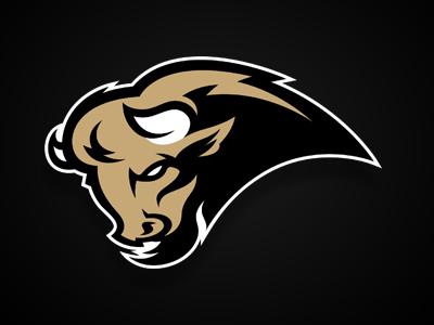 Bison logo logodesign bison buffalo graphic logosport sport