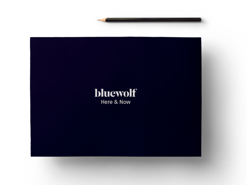 Bluewolf Here & Now Branding Guidelines Book visual design branding