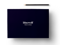 Bluewolf Here & Now Branding Guidelines Book
