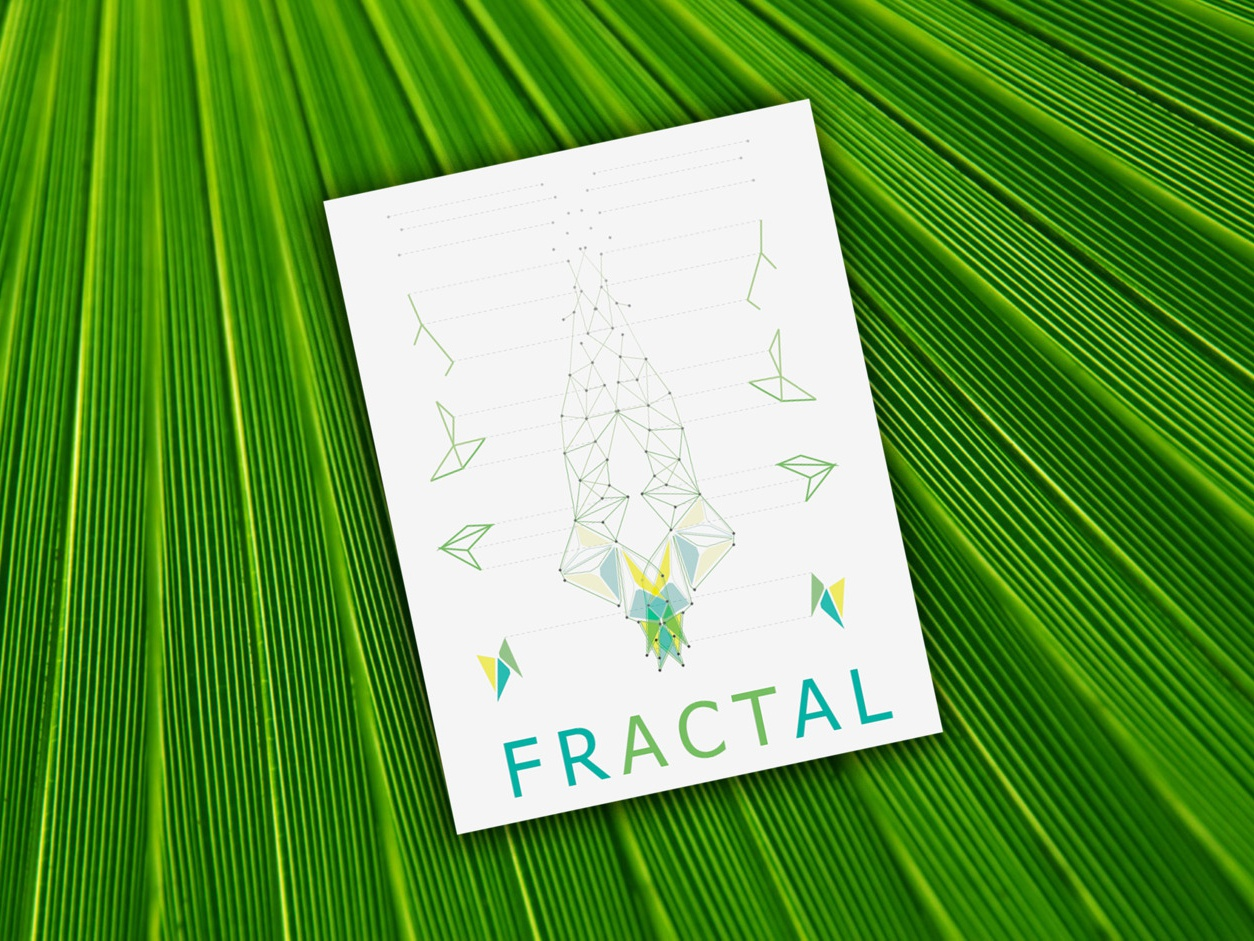 Fractal Experiment graphic design