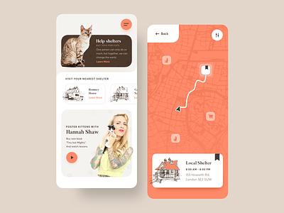 Adopt a cat app concept app design branding bright color cat clean concept design minimal mobile sketch typography ui uiux ux vector web app