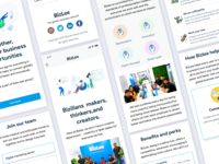 Agency responsive web pages