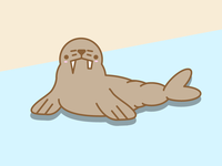 Wading Walrus