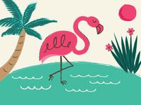 Flamingo Texture Study