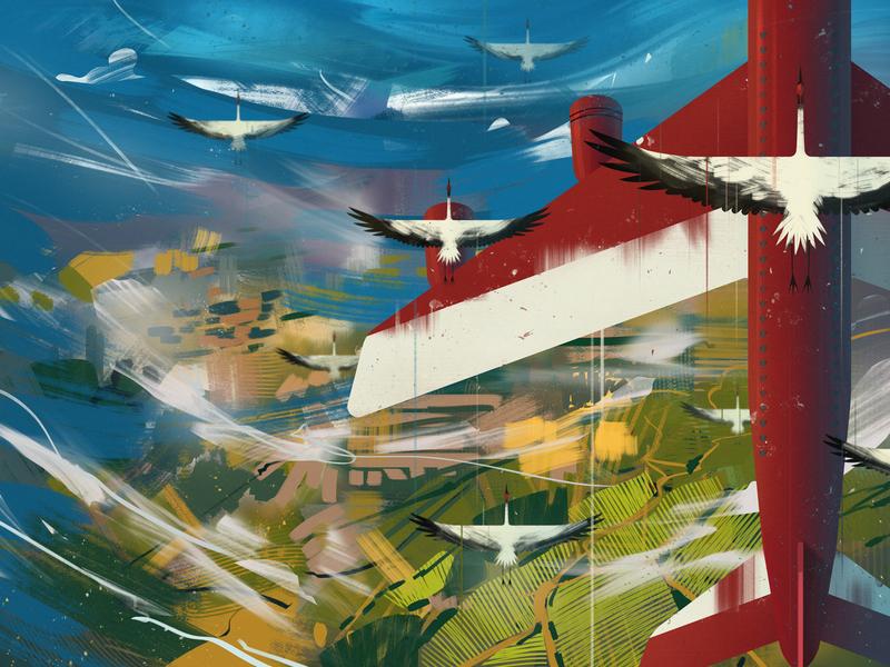 Plane & Cranes sky aerial view airplane bird cranes plane
