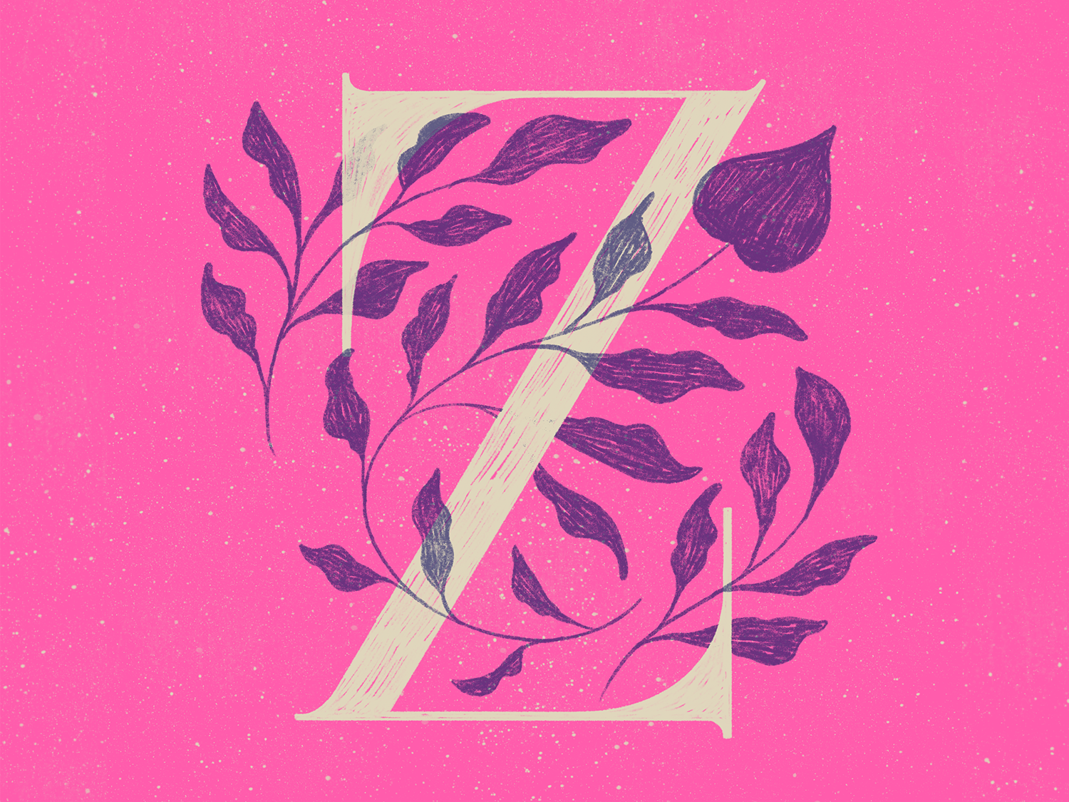 Z 36 days of type lettering procreate typography colors type lettering texture illustration