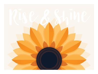 Sunflower grow morning shine rise sun poster art design poster print illustrator illustration flower sunflower
