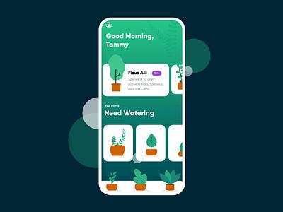 unDraw x Adobe XD: Plants tracking indoor plants mobile ui mobile app plants prototype userinterface user interface undraw adobexd interface ui leaves illustration design