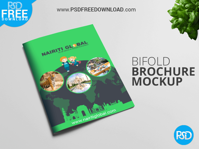 Green Brochure Design Template By Psd Free Download Dribbble