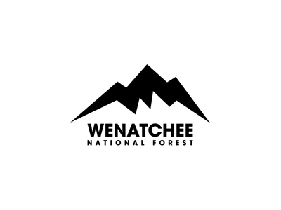 Wenatchee National Forest Logo moutain wenatchee illustration mark challenge minimal logo thirtylogos national forest