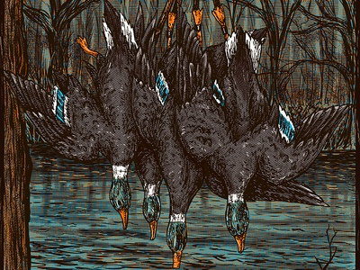 Ducks halftone mallard fowl water south hunting duck