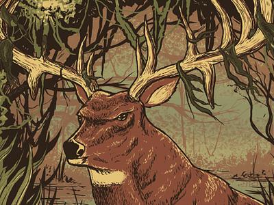 Buck illustration south outdoors swamp deer buck