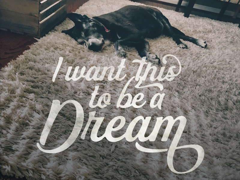 I want this to be a dream sad puppy dog script typography type hand drawn type handlettering