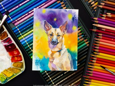 Tiny mixed media German Shepherd dog painting art mixed media traditional art colored pencils drawing painting watercolor painting watercolor art gouache watercolor illustration animal illustration animal art animal pet dog portrait dog illustration dog art dog german shepherd