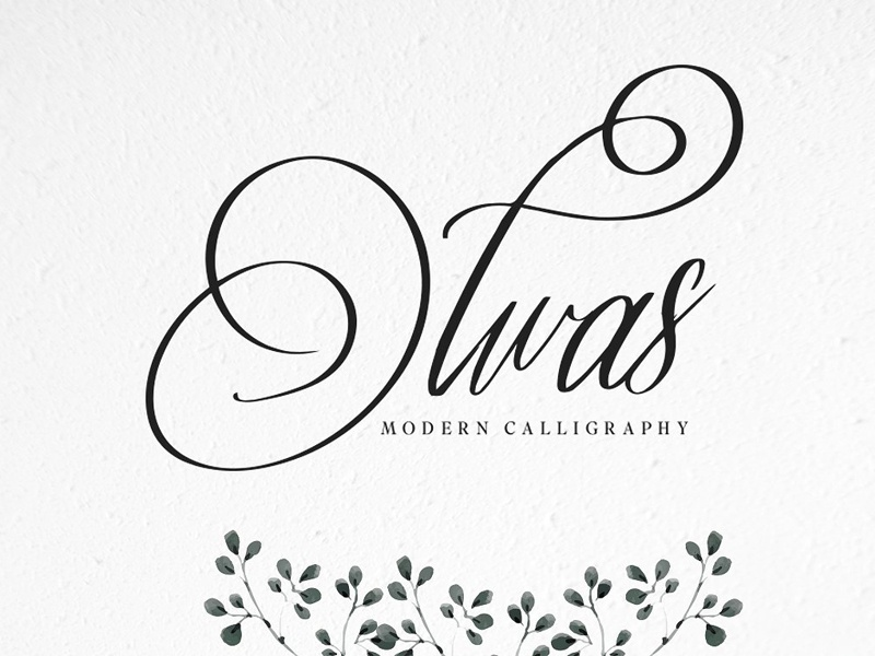 Olwas & Extra modern calligraphy calligraphy font calligraphy floral hand drawn lettering branding logo font typography display script
