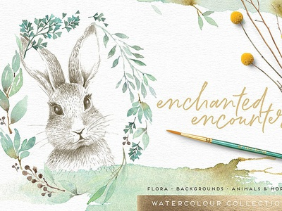 Enchanted Encounter watercolour set