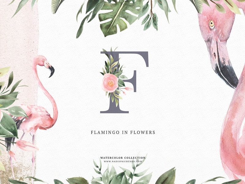Watercolor Flamingo Flowers By Graphic Assets On Dribbble